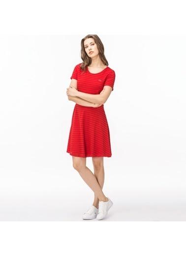 Lacoste Elbise Kırmızı